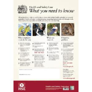 HSE Poster Image